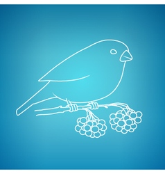 Bullfinch on a blue background vector