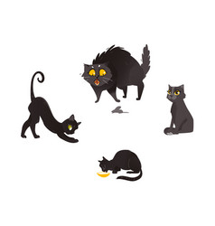 Cartoon cat animals set isolated vector