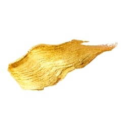 Gold metal foil glitter brush stroke golden vector