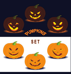 Pumpkins set vector