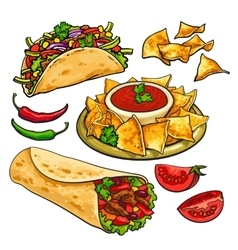 Set of traditional mexican food - burrito taco vector