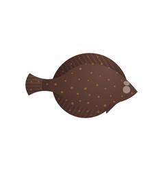 Cute halibut flounder flatfish vector