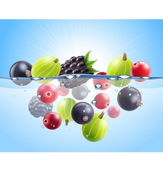 Realistic colorful berries background vector