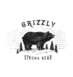 Strong bear in forest vector image
