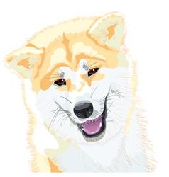 japanese akita inu vector image