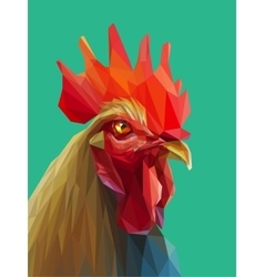 Beautiful colorful and bright polygon rooster vector image vector image