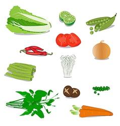 vegetable vector image