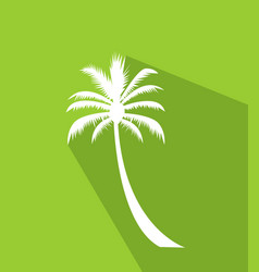 palm tree image vector image