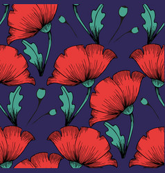 red poppies hand drawing seamless colorful vector image
