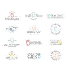set of retro vintage organ and anatomy logo or vector image