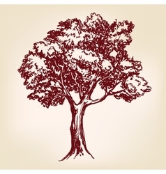 Tree hand drawn llustration sketch vector