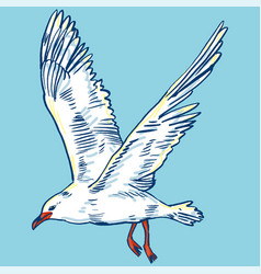 gull flight bird and seabird  sea  isolated on vector image