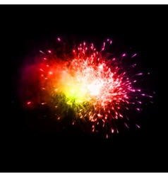 Colorful fireworks in the night sky vector