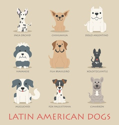 Set of latin american dogs vector