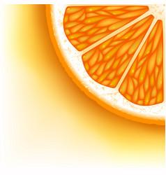 orange slice vector image