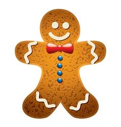Gingerbread cookie vector