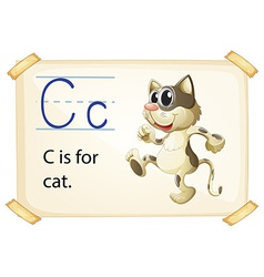Letter c vector