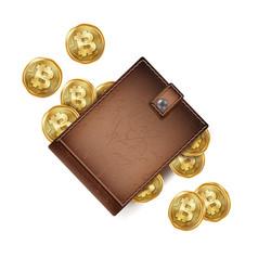 bitcoin wallet brown color abstract vector image vector image