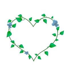 Vine leaves with blossoms in a beautiful heart vector