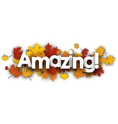 Amazing banner with maple leaves vector