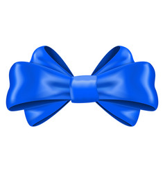 blue silk ribbon bow decoration element vector image