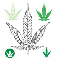 Cannabis leaf outline vector