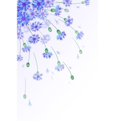 Vertical background with bluebottles vector image