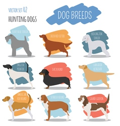 Dog breeds hunting dog set icon flat style vector