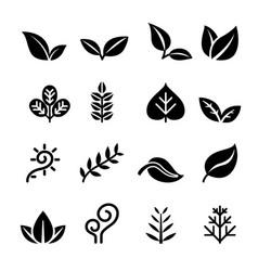 leaf plant herb vegetarian icon set vector image vector image