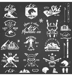 Ski club design vector image vector image