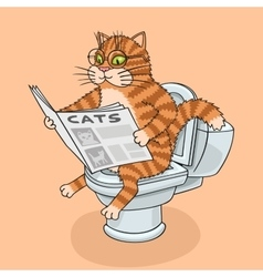 The cat in the toilet vector