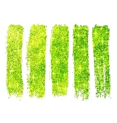 Green shining glitter polish samples isolated on vector