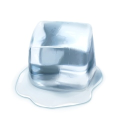 Ice cube isolated on white background vector