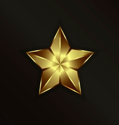 Special gold star vector