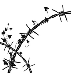 Ivy with barbed wire vector