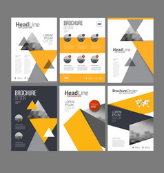 brochure layot set vector image vector image