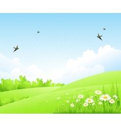 Clean spring amazing scenery vector