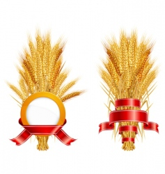 Ears of wheat amp ribbon vector