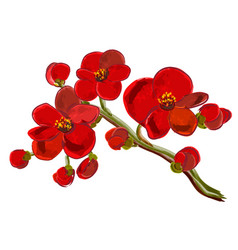 Red orchid brunch vector
