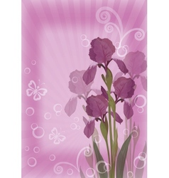 Flower background for greetings card vector image vector image