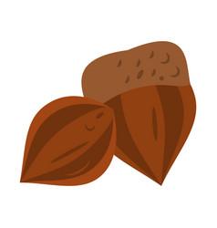 Nut icon image vector