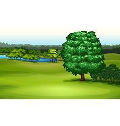 Natural environment vector