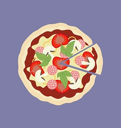 Pizza food icon vector
