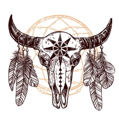 Buffalo skull with feathers and dreamcatcher vector
