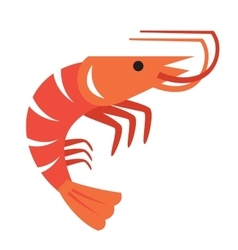 Color prawn vector