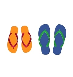 Flip flops isolated vector