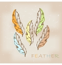 Vintage hand drawn native tribal feather vector