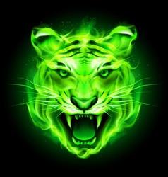 Fair tiger Green 01 vector image vector image