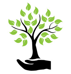 hands holding tree vector image