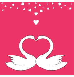 Valentine birds vector image
